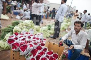 stock-photo-57305698-wholesale-flower-market-new-delhi-india-300x200