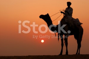 stock-photo-2628498-camel-rider
