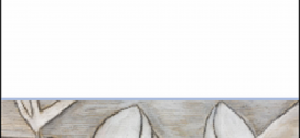 لا أحد يتذكّر : مجموعة شعريّة للشّاعر الفرنسيّ فانسون بوطال عن دار نبرات شعريّة