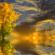 عهدُ الخريفِ : شعر:  – الموصل – العراق