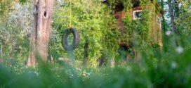 حدائق الدّهشة: خمس قصص قصيرة جدّا : محمّد بوحوش –  توزر- تونس