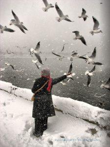 hiver-oiseaux-et-femme-seule